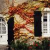 ahouseofleaves: house of leaves (house of leaves)