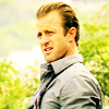 tailoredshirt: ([H50] Danny | seriously?)