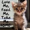 ravan: by ravan (Love Me Feed Me)