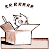 kaigou: cat in a box going rrrrrrrrrrr (1 rrrrrrrrrrrrr)