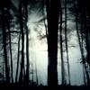 possibilityleft: (trees)