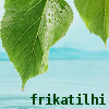 frikatilhi: (koivu)