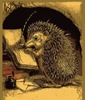 oursin: Drawing of hedgehog in a cave, writing in a book with a quill pen (Writing hedgehog)
