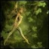 foret_interdite: Fée des bois (fairy wood, Fée des bois)
