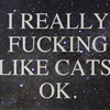 "midnightlights: Text: ""I really fucking like cats, ok"" (really like cats)"