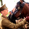 kerkevik_2014: For Friendship (War Horse)