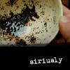 starlady: (siriusly)