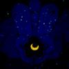 thewickedlady: (sailor moon - made of stars)