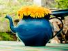 moy_compas: (teapot)