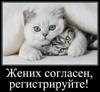kotyata: (жених согласен)