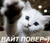 svart_ulfr: (Кот)