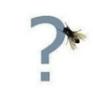 snovasya: (муха)