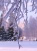 annarakhmanina: (зима)