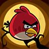 cololeus: (сердитый птиц)