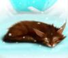 solnze_lesa: (Кошка на снегу)
