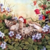 tigra_tales: (цветочная кошка)