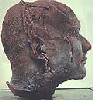 geliofant: (Head)