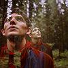 jenwryn: Merlin, outdoors in the forest. (merlin • merlin; belongs outdoors)