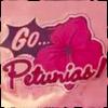 shatteredshards: Go Petunias! (petunias)