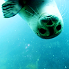 zanzando: A seal looking at the camera, upside down. (Sealclap?)