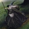 vlion: (wizard)