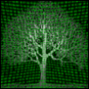 vlion: (tree)