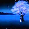 mirrored_wings: (Yuuko (Dreamworld))