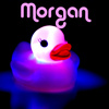 originalpuck: A rubber ducky, with the name Morgan on top. (Ducky Morgan)