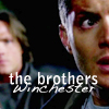 last01standing: ([SPN] Brothers Winchester)
