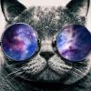 aledrina: (Galaxy Cat)