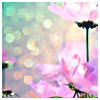 beautiful_dreams_25: glitter and flowers (Lights of nature)
