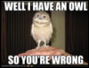 speedingtortoise: Well I Have an Owl So You're Wrong (Owl so wrong)