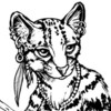 rabid_bookwyrm: Black and white illustration of an anthropomorphized margay cat (Default)