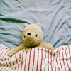 recessional: a stuffed bear (resembling Pooh-bear) is under a blanket (personal; bear in a blanket)