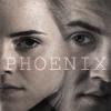 speedgeek: (Phoenix!verse DHr)