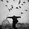 shutyourrudebox: (× stock • come take me flying ·)