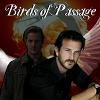 "neotoma: ""Birds of Passage"" story art (GBB-Birds of Passage)"
