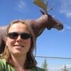 caribou_gen: (moose)