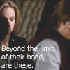 hawkwing_lb: (Bear CM beyond limit the of their bond a)