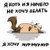 oner: (ленивое кошко)