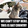 jo_blogs: (Bat country)