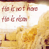 owl: Empty stone tomb. He is not here; he is risen. Hallelujah! (easter)