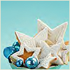 sashajwolf: white star-shaped cookies on blue background (blue and white star cookies)