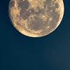 intheconcertroom: (la lune ne garde aucune rancune)