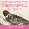 trayellis: (How Sweetly)