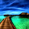 spikesgirl58: (Tahiti)