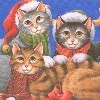 spikesgirl58: (christmas kittens)
