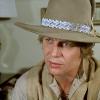 shfan: <lj user=nickygabriel> (Hutch Cowboy)