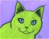 green_cat: (Default)