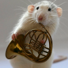kyuurisando: This rat is playing a french horn. Your argument is invalid. (Default)